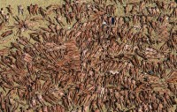 Spencer Tunick-45735