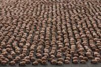 Spencer Tunick-54428