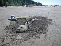 beach-art-3446