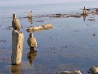 beach-art-50532