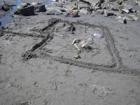 beach-art-5065