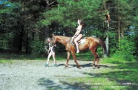 horseback_riding_HN2.268