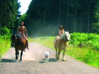 horseback_riding_family